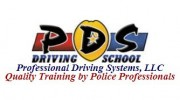 Professional Driving Systems